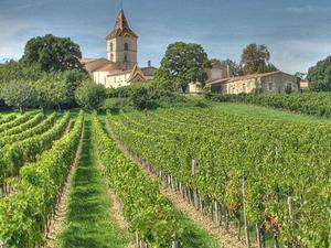 Grands Crus Classes de Graves Wine Tour and Montesquieu's Chateau Photos