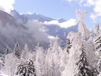 Argentiere