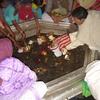 Vishnupada