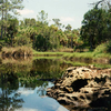 Waccasassa Bay Preserve State Park