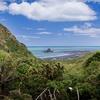 Waikatere Ranges Regional Park - Auckland NZ
