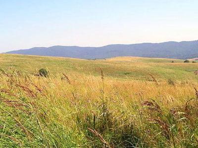 Waldkarpaten  Bieszczady
