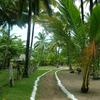 Walk Path Going To Resorts