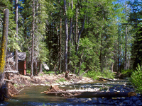 Ward Creek