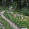 Webb Canyon Trail