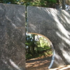 Wellington Botanic Gardens Sculpture