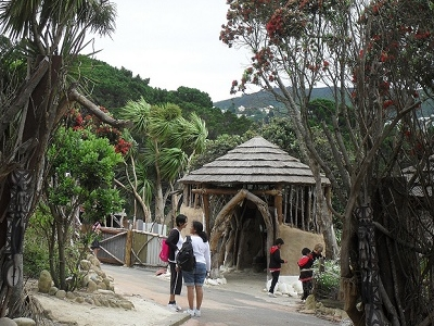 @ Wellington Zoo NZ