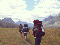 West Dawson Pass Trail