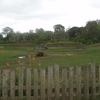 White Rhino Habitat Dublin Zoo