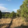 View Of White Rocks Trail