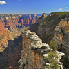 Widforss Trail - Grand Canyon - Arizona - USA