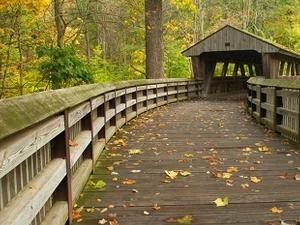 Wildwood Preserve Metropark