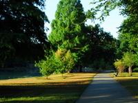 Willowbrook Park