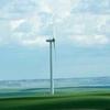 Wind Farm West Of Magrath