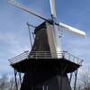 Windmill Windlust
