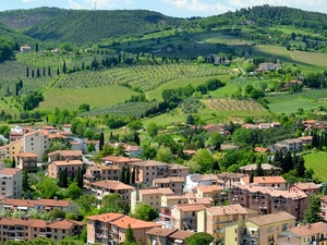 Wine + Wellness - Tuscany Wine Vacation Photos