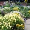Winterbourne Botanic Garden