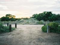 Witjira National Park