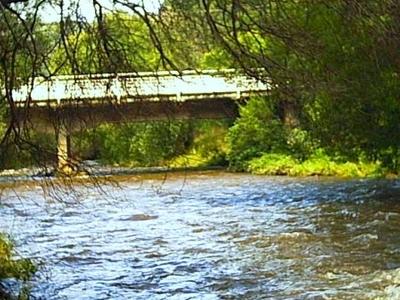 Wainui  Bridge