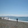 West Coast Trail Beach Hiking