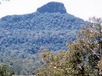 Wilsons Peak
