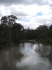 Yarra River From Kanes Bridge