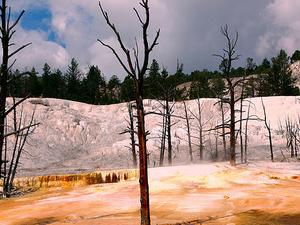 Yellowstone Plateau
