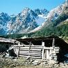 Yumthang - Himalayas - North Sikkim