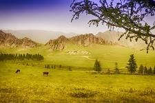 Yurt Camp In Terelj National Park In Mongolia