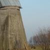 Zabiele's The Second Dutch Mill