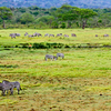 Arusha Safari Package