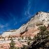 Zion National Park View UT