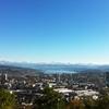 Zurich From Waidberg
