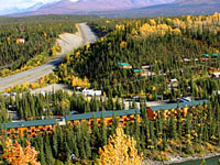 Denali Grizzly Bear Cabins & Campground