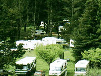Olema Ranch Campground