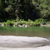 Redwoods River Resort And Campground