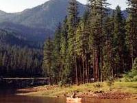 Trinity Lake Resorts At Pinewood Cove