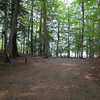 Petes Lake Campground