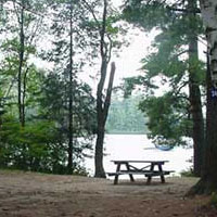 Rollins Pond Campground
