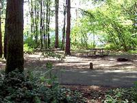 Ike Kinswa State Park Campground