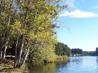 Millersylvania State Park Campground