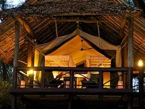 14-Days Preium Safari in Kenya