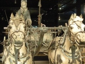 1 day Xi'an Terracotta Warriors and Horses Museum private tour Photos