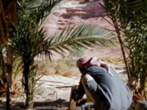 3 days JEEP AND CAMEL DESERT COMBO SAFARI Photos