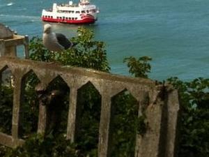 Alcatraz and Fisherman's Wharf Wax Museum with Optional Aquarium of the Bay Ticket Photos