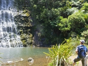 Auckland All Inclusive Full Day Tour