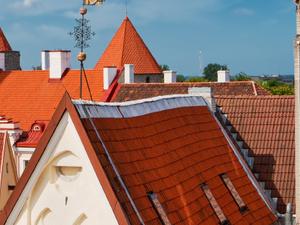 Baltic Adventure (Tallinn) Photos