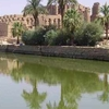 BEST OF EGYPT TOURS