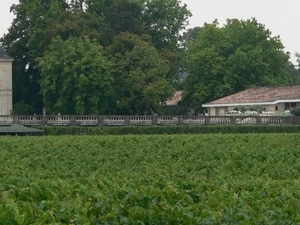 Bordeaux Wine Tours - Medoc full day scheduled Photos