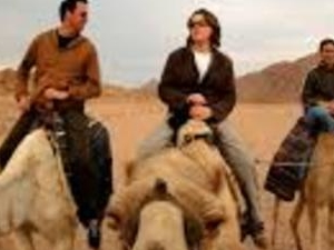 Camel or Horse Riding Photos